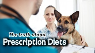 'Prescription Diets for Kidney Disease in Dogs & Cats'